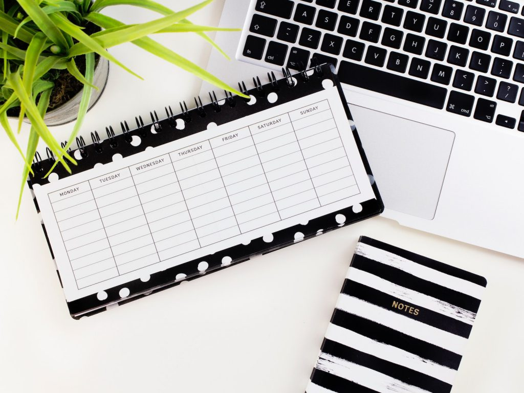 plant, planner, notebook, and laptop displayed on a white background
