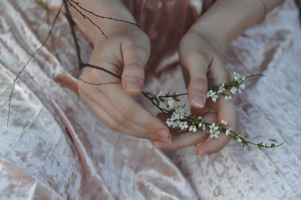 closeup of woman's hands holding a flowery branch